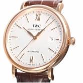 IWCIW356504コピー