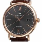 IWCIW356511コピー