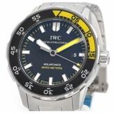 IWCIW356808コピー