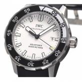 IWCIW356811コピー